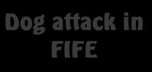 Dog Attach Around Fife